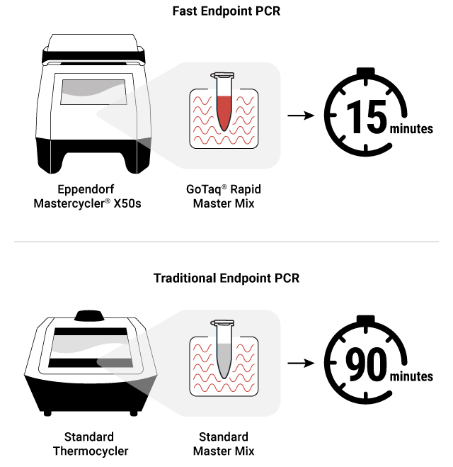 Fast PCR illustration for endpoint pcr 17540ma