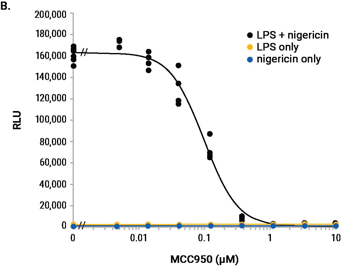 MCC950 inhibition IL-1b release Lumit immunoassay