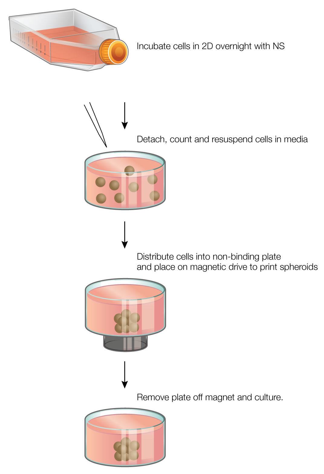 Figure01_web