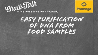 Easy Purification of DNA from Food Samples