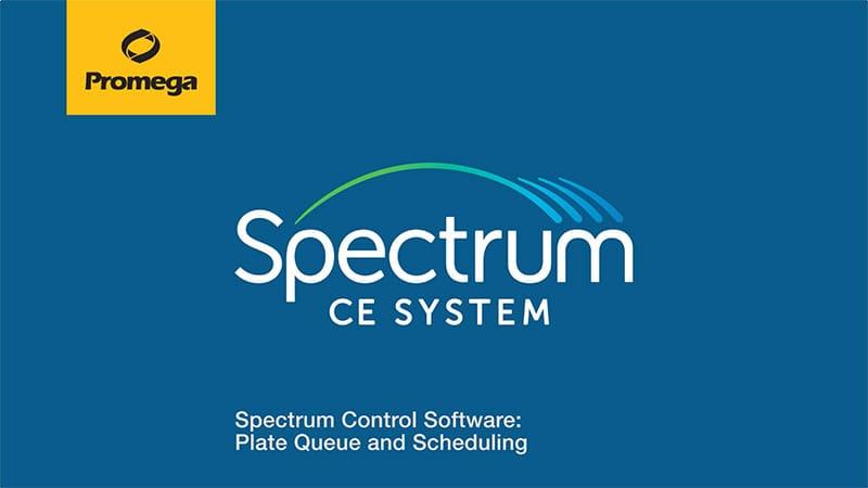 29520397-spectrumplatequeuefallback