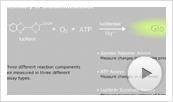 Bioluminescent Assays Animation Thumbnail