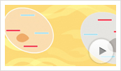 MultiTox-Fluor Assay Animation Thumbnail