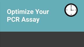 Optimize Your PCR Assay Video