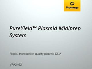 PureYield Plasmid Midiprep System Video