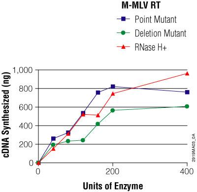 Properties of MMLV reverse transcriptases