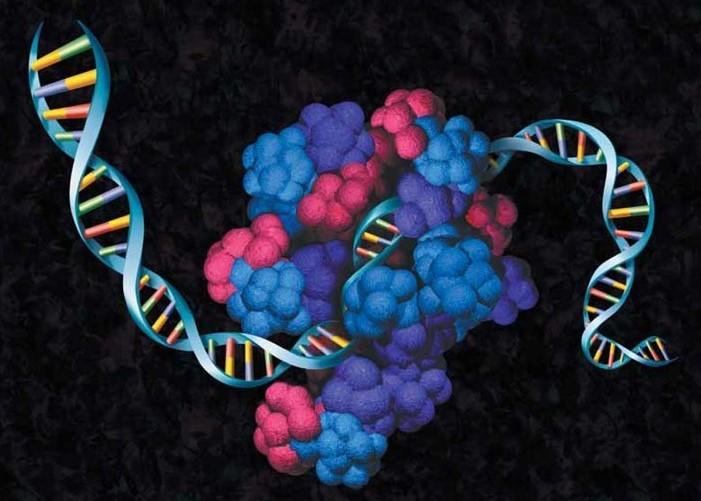 in vitro protein expression illustration
