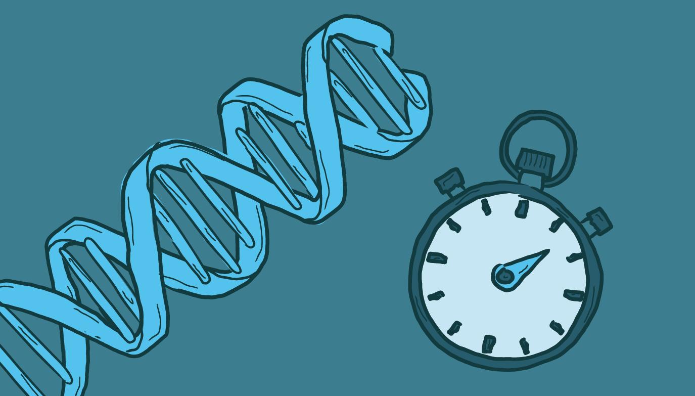 Rapid DNA Technology