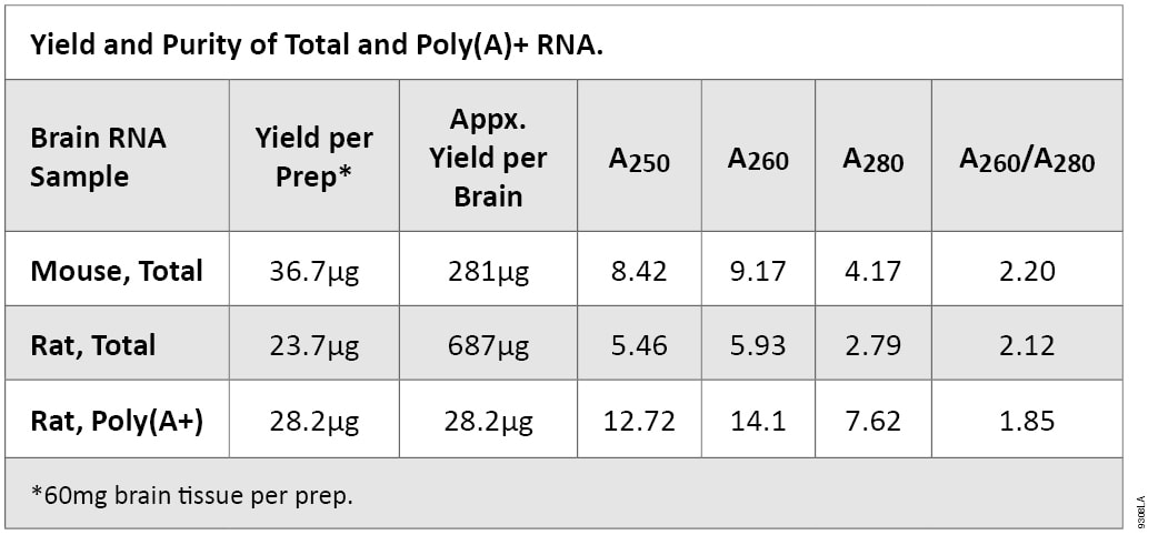 Yield and Purity of Total and Poly(A)+ RNA
