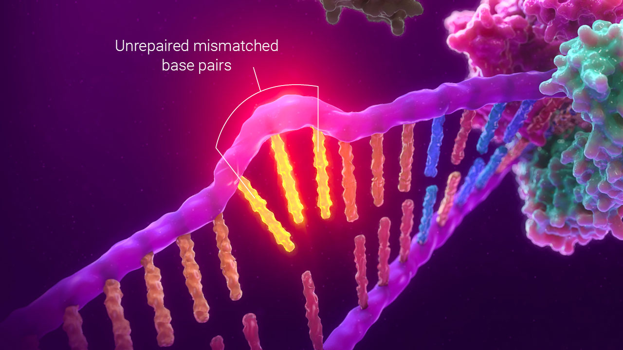 detecting msi by pcr