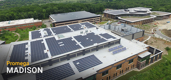 solar-panels-600x280