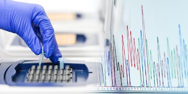Forensic Samples Provide DNA Profile