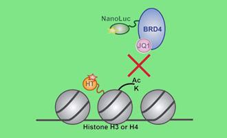 Webinar on HaloTag for Epigenetic PPI Resource