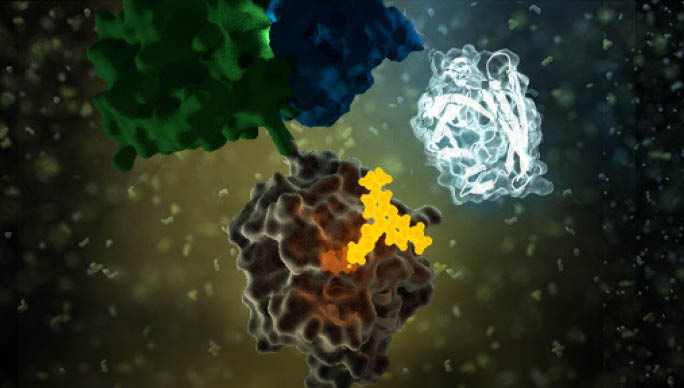 nanoluctechnologysupage-proteinprotein-interactions-nanobret