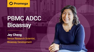 PBMC ADCC Assay Interview With Jey Cheng